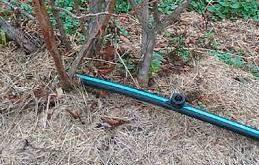 تجهیزات آبیاری قطره ای درختان