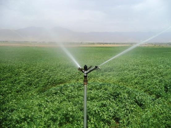 پخش انواع آبپاش های آبیاری بارانی