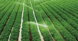 قیمت لوله های آبیاری کشاورزی تحت فشار کیفیت بالا