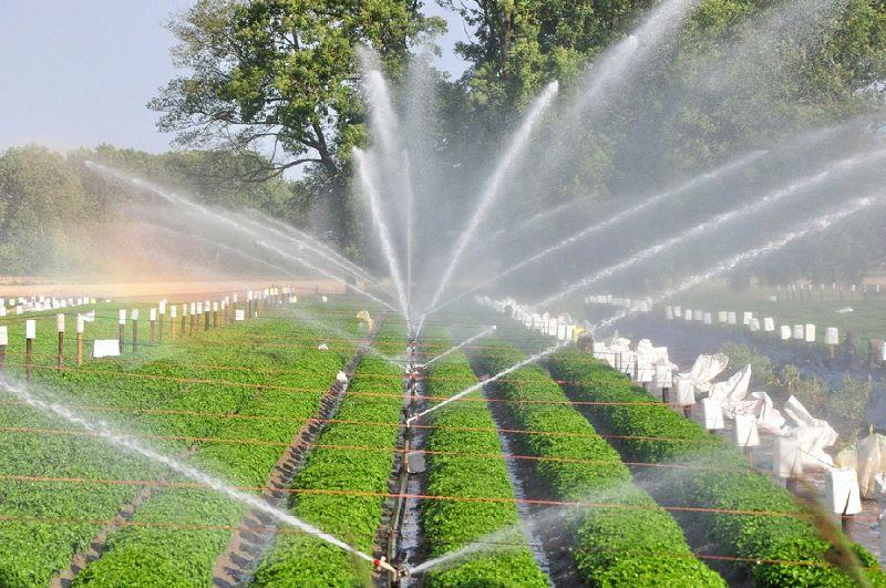 فروش تجهیزات آبیاری بارانی به قیمت کارخانه