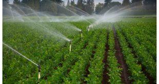 قیمت لوازم آبیاری بارانی ارزان