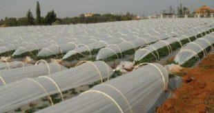 نایلون کشاورزی تبریز با قیمت مناسب